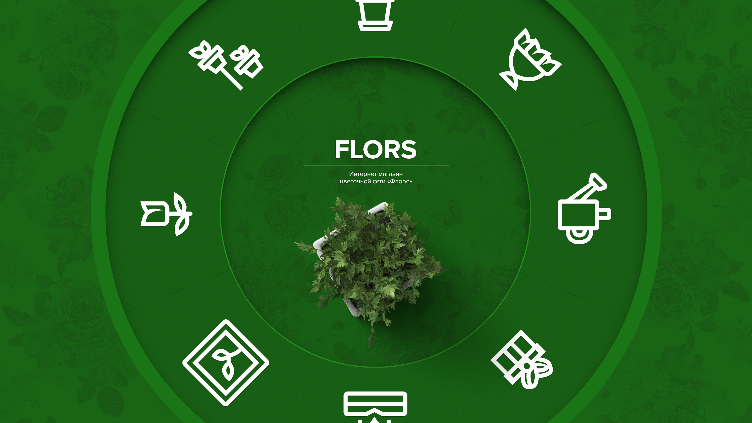 Flors cover